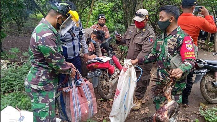 Aparat Bubarkan Judi Tajen di Desa Ularan Buleleng, Dua Penyelenggara Diamankan di Mapolsek Seririt