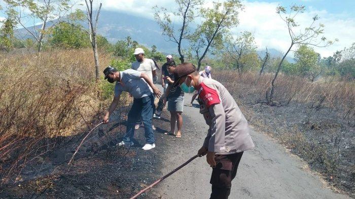 Hektaran Lahan Warga di Banjar Dinas Lebah Karangasem Hangus Dilahap Si Jago Merah