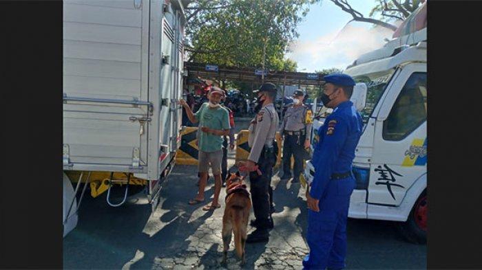 Petugas Kerahkan Anjing K9 untuk Memeriksa Penumpang & kendaraan di Pelabuhan Padang Bai Karangasem