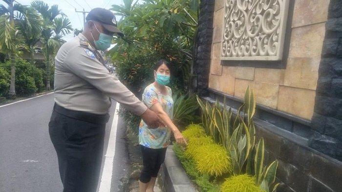 Karena 2 Tanaman Hias, Ibu di Denpasar Ini Harus Berurusan dengan Polisi