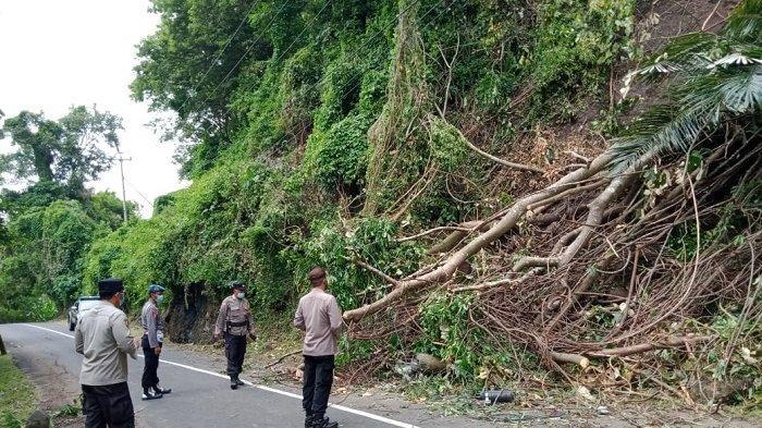 Tanah Longsor Tutup Badan Jalan di Tabanan,Tiang Listrik Roboh dan Kabel Wifi Putus