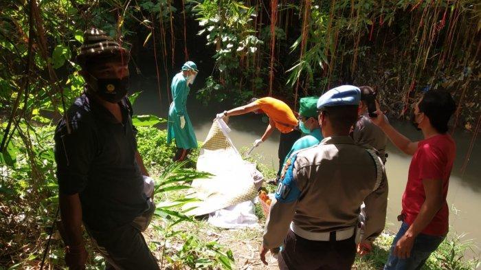 BREAKING NEWS - Sesosok Mayat Ditemukan di Tukad Batuan Gianyar