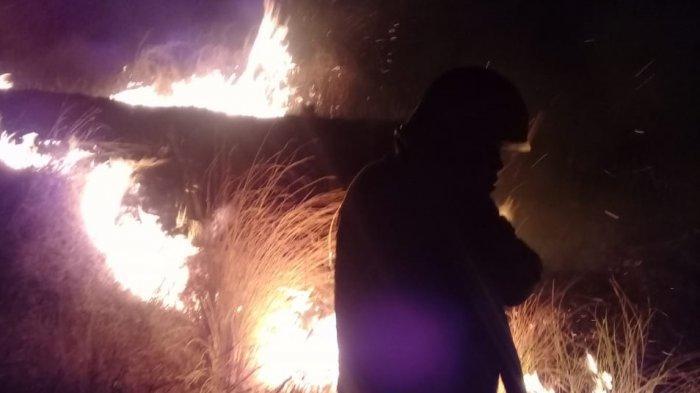 Warga Digegerkan Dengan Kebakaran Lahan Malam Dini Hari