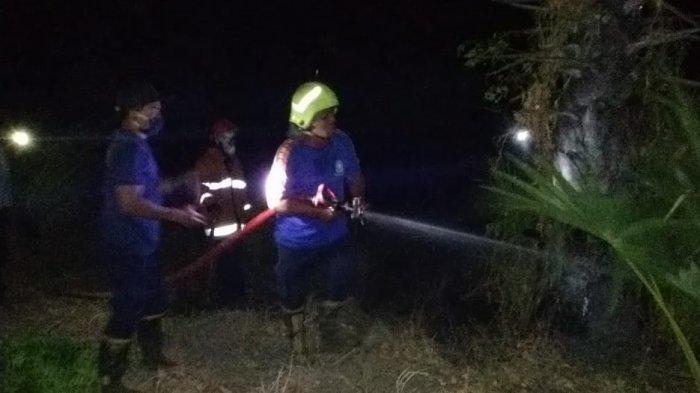Hektaran Lahan Warga di Kubu Karangasem Hangus Terbakar, Pemilik Rugi Rp 20 Juta
