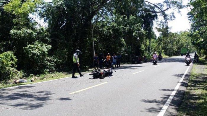 Tabrak Pohon Intaran Perindang Jalan, DSP Meninggal di Melaya
