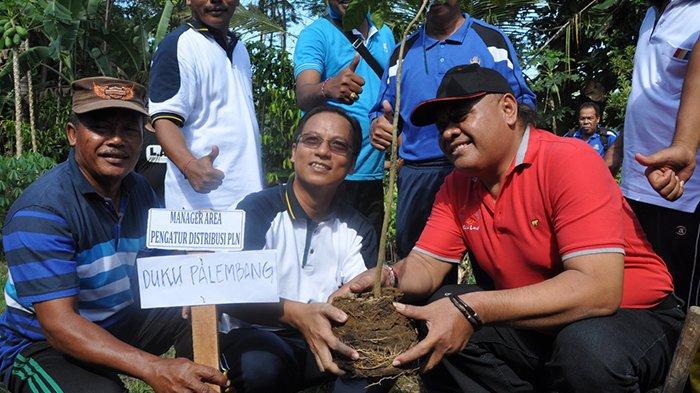 PLN APD Bali Serahkan 400 Tanaman Holtikultura Majukan Petani Lokal