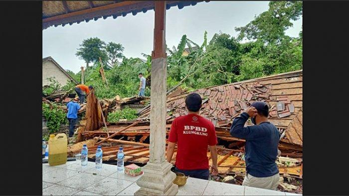 Pohon Beringin Tumbang Timpa Bangunan Pura Gria Nusa Penida, Pengempon Akan Minta Petunjuk Niskala