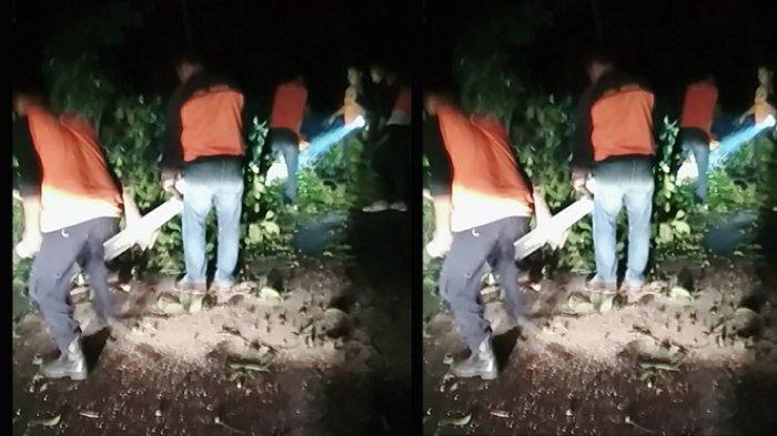 Pohon Tumbang Akibat Angin Kencang di Tabanan, Warga Diimbau Berhati-hati Melintasi Kawasan Ini
