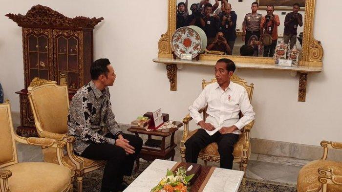 Menakar Arah Politik Partai Demokrat Pasca Pertemuan AHY-Jokowi, Ferdinand Sebut Siapkan 2 Opsi Ini