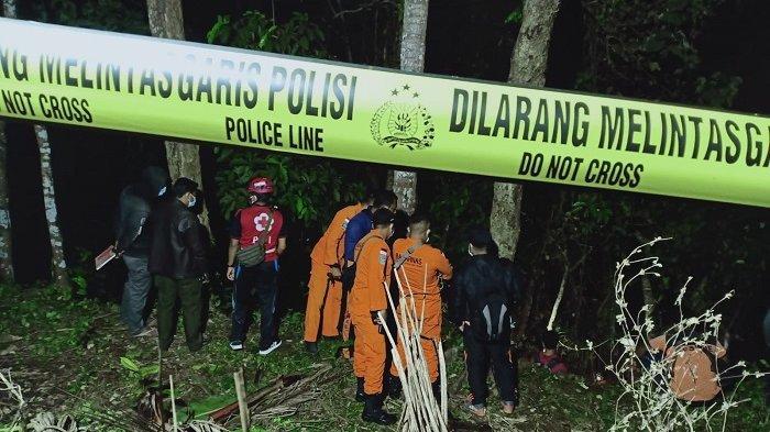 Buruh Pencari Kelapa di Tampaksiring Tewas Setelah Jatuh dari Pohon