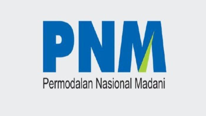 Lowongan Kerja Posisi Programmer pada BUMN PT Permodalan Nasional Madani