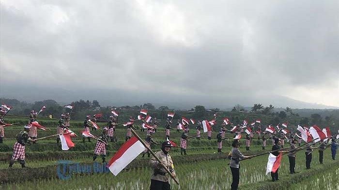 TRIBUN WIKI: 8 Wisata di Bali untuk Menikmati Hamparan Terasering Sawah