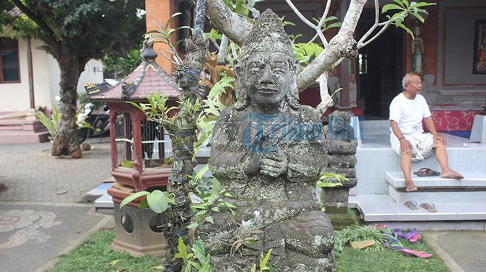 Luar Biasa! Ini Khasiat Kulit Pohon Kamboja Menurut Usada Taru Pramana