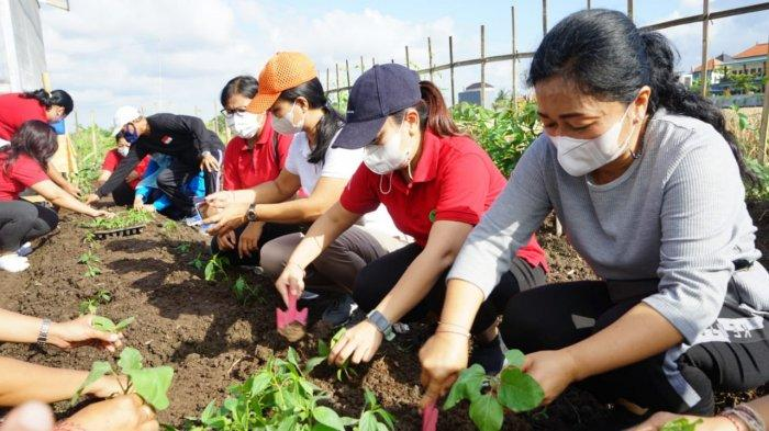 Kurangi Angka Stunting, Ny. Antari Ajak Masyarakat Manfaatkan Pekarangan Rumah Untuk Berkebun