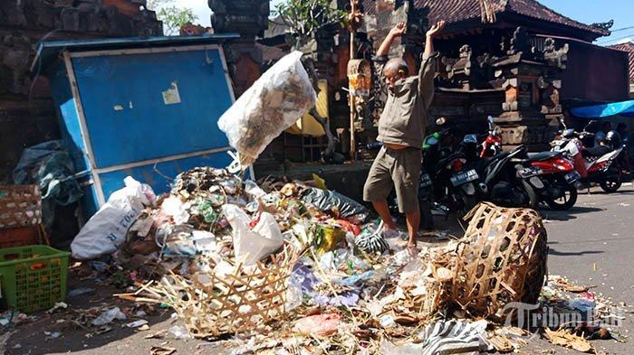 Sepekan Tak Kunjung Diangkut, Made Darma Geram dan Hamburkan Sampah di Depan Pura