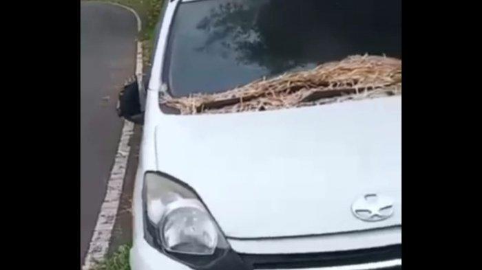 Sebuah Mobil Ditinggal Turis Penyewa di Ubud Gianyar, Mobil Mengalami Kerusakan