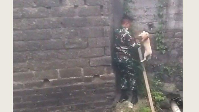 Terima Laporan Ojol Ada Anjing Terjebak di Got, Anggota TNI AD di Bali Langsung Lakukan Penyelamatan