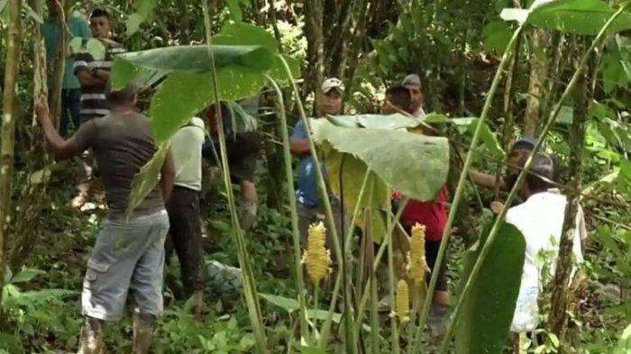Ibu Hamil & 5 Anaknya Tewas dalam Ritual Menyimpang Pengusiran Setan di Panama, Ungkap Fakta Begini