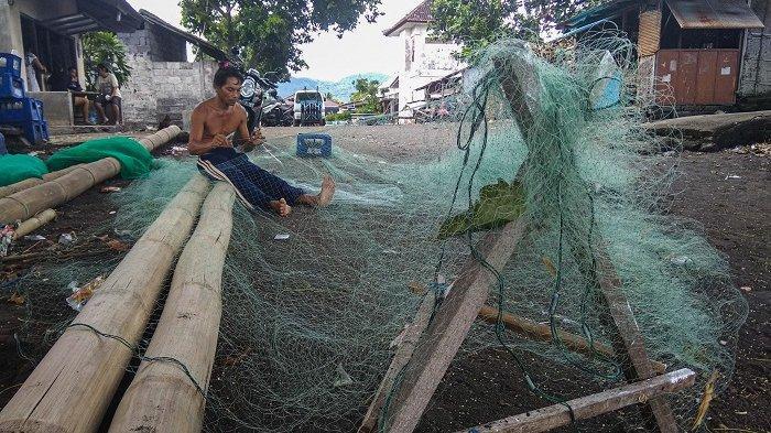 Nelayan Kusamba Keluhkan Lumba-Lumba yang Jadi Hama, Kerap Rusak Jala dan Curi Hasil Tangkapan