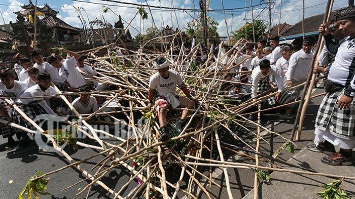 Tradisi untuk Tolak Musibah, Ngrebeg Mekotek Dilaksanakan Setiap Hari Raya Kuningan