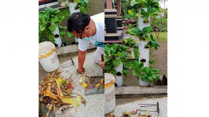 DLH Tabanan Bali Ajak Masyarakat Buat 2 Lubang Biopori Setiap KK, Antisipasi Banjir Saat Musim Hujan