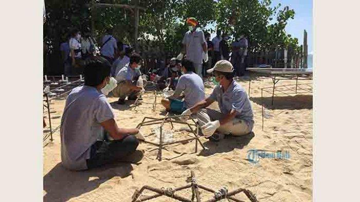 Restorasi Terumbu Karang di Pantai Pandawa, Warga yang Bantu Pengerjaan Dapat Rp 110 Ribu Per Hari
