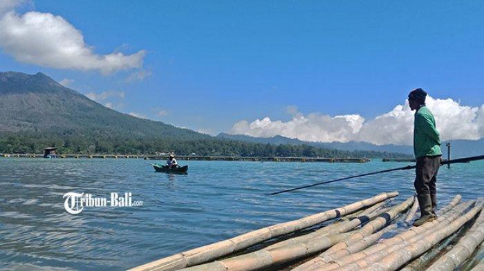 Jumlah Kuramba Jaring Apung di Danau Batur Bertambah Sejak Pandemi Covid-19, Kadis PKP Bangli Dilema