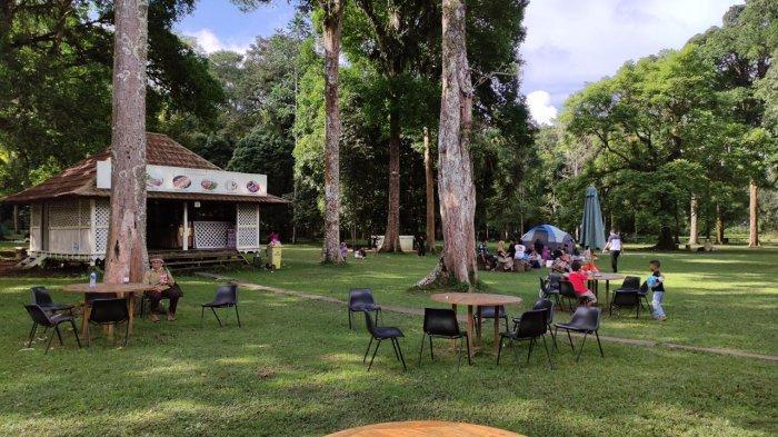 Kunjungan Libur Lebaran Tembus 20 Ribu Wisatawan, Kebun Raya Bedugul Masih Jadi Primadona di Bali