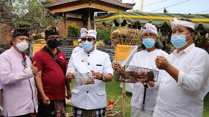 Kendalikan Hama Penyakit, Krama Desa Adat Bedha Tabanan Gelar Ritual Ngaben Bikul Besok
