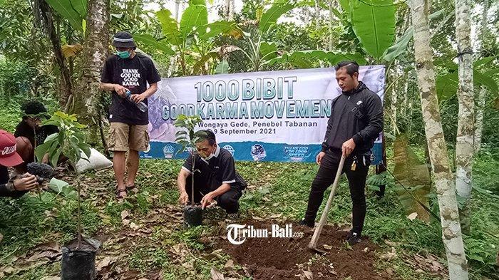 Pemuda Wongaya Gede Dapat Bantuan 1.000 Bibit Pohon, Bangkitkan Minat Bertani Para Pemuda Tabanan