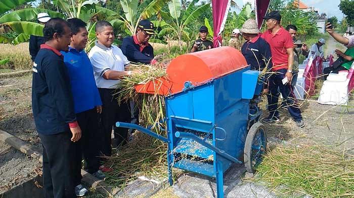 KPwBI Bali Dukung Klaster Padi untuk Jaga Inflasi