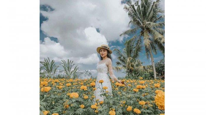 Rekomendasi 7 Tempat Wisata Terbaik di Karangasem Bali untuk Liburan Akhir Pekan