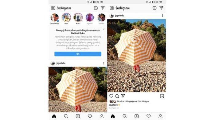 Apakah Fitur Sembunyikan Like di Instagram Efektif untuk Kesehatan Mental? Ini Penjelasan Ahli
