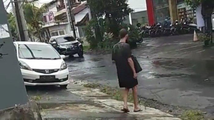 Viral Bule Linglung di Jalan Gatsu Tengah Denpasar Bali, Dicari Satpol PP Tidak Ketemu