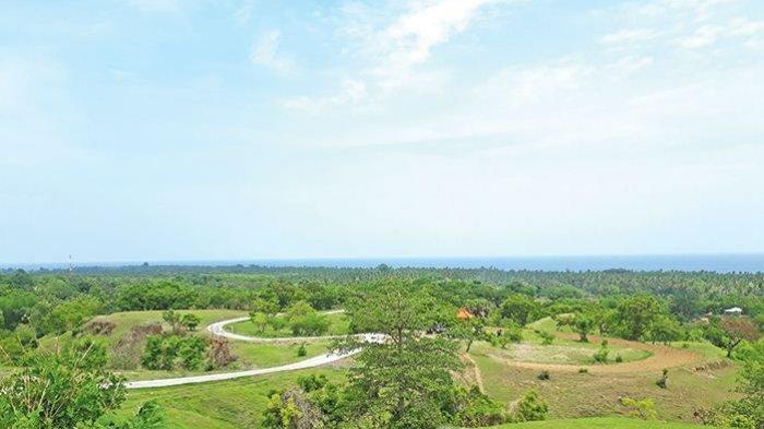 Bandara Buleleng Akan Dibangun di Bukit Teletubies, Ini Kata Budi Karya Sumadi