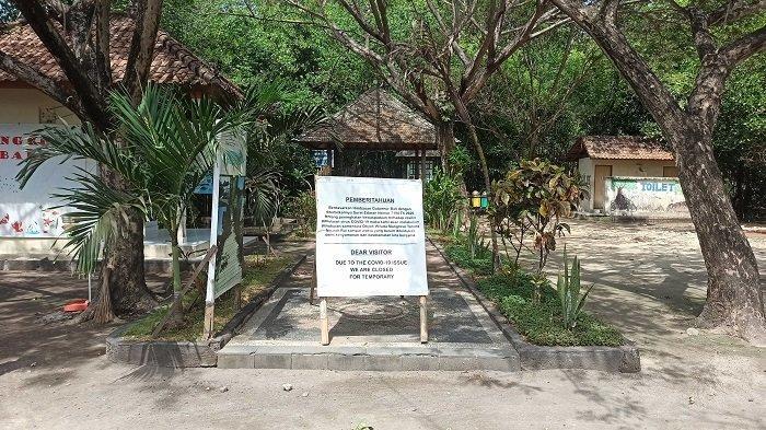 Wisata Hutan Mangrove Denpasar Ditutup Sejak Maret 2020