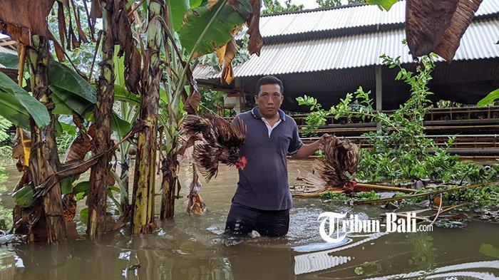 Warga Mengungsi Tengah Malam, Suasana Mencekam Melanda Desa Kusamba Klungkung