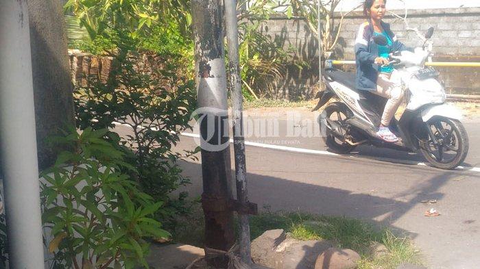 Tiang Telkom Keropos, Ini Kata Pihak Witel Denpasar