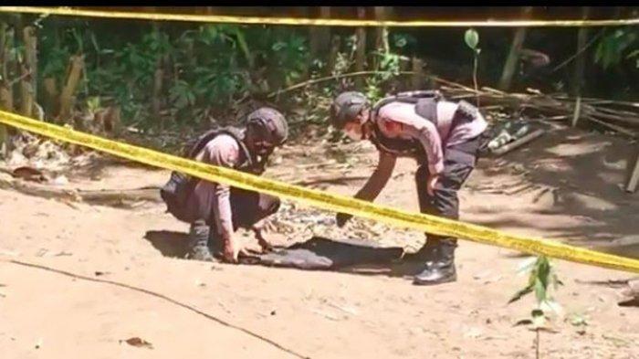 Warga Desa Jegu Temukan Mortir Peninggalan Zaman Perang,Lalu Diledakkan Tim Jibom di Pantai Kelating