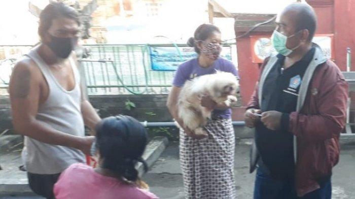 Kasus Rabies Kembali Muncul, Dinas Pertanian Targetkan Vaksinasi18.000Populasi Anjing di Klungkung