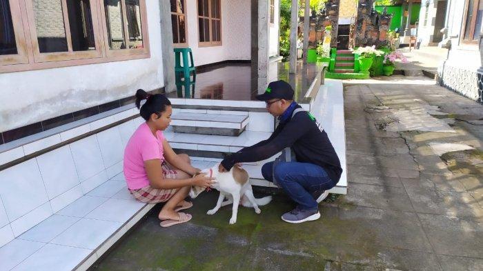 Tujuh Warga di Banjar Anyar Sari Kangin Melaya Jembrana Bali Digigit Anjing Rabies