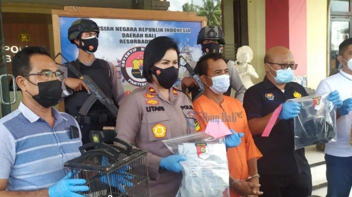 Tebas Karmiadi Hingga Tewas di Bali, Matsari Mengaku Khilaf, Mohon Keringanan Hukuman