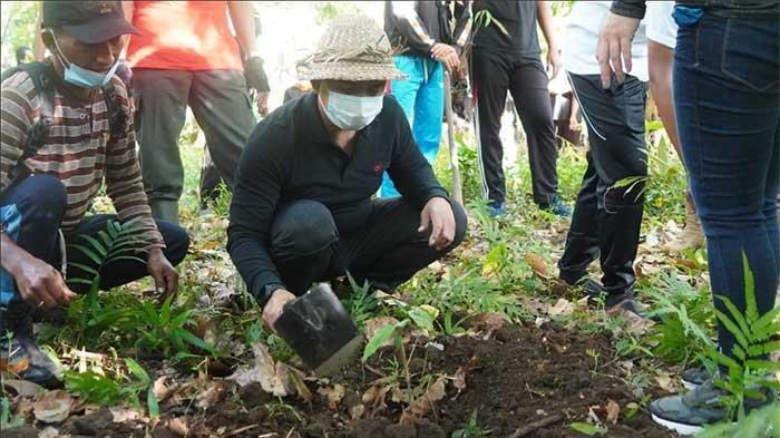 Dukung Visi Nangun Sad Kerthi Loka Jembrana, Wabup Ipat Tanam Bambu Petung di Wilayah Benel