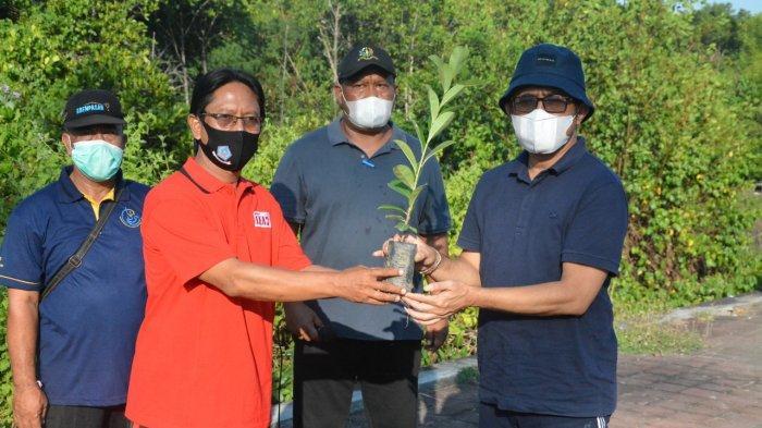 Peringati Hari Lingkungan Hidup Sedunia, Wali Kota Jaya Negara Tanam Pohon Mangrove
