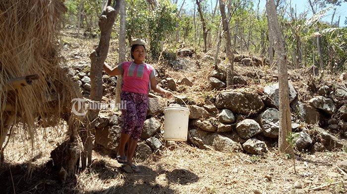 Ratusan Warga Banjar Tanah Barak di Karangasem Mulai Kesulitan Mendapat Air Bersih