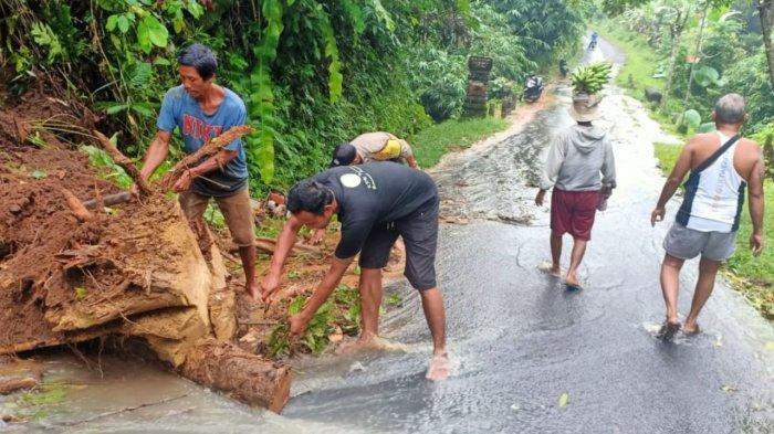 Longsoran Tanah Sempat Tutupi Jalan di Tabanan, Akar Pohon Sudah Lapuk Hanyut Oleh Hujan Deras