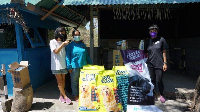Peduli Hewan Terlantar, YPPI Mengajak Seluruh Lapisan Masyarakat untuk Memerhatikan Hewan Domestik