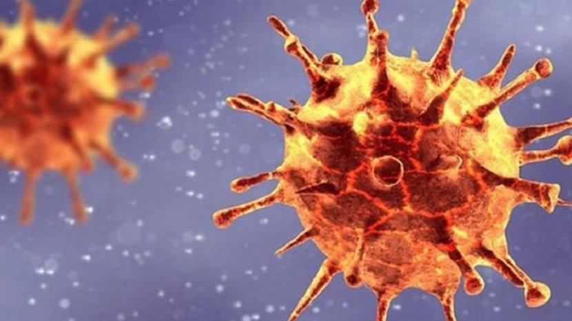 varian-baru-virus-corona-yang-ditemukan-di-inggris-memiliki-mutasi-pada-bagian-receptor.jpg
