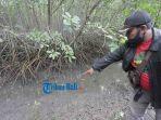 agus-santoso-polisi-hutan-mengecek-kerusakan-tempat-untuk-pejalan-kaki-di-kawasan-hutan-mangrove-2.jpg