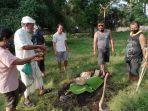 aparat-desa-adat-pemuteran-menguburkan-orok-laki-laki-yang-ditemukan-di-banjar-dinas-kembang-sari.jpg